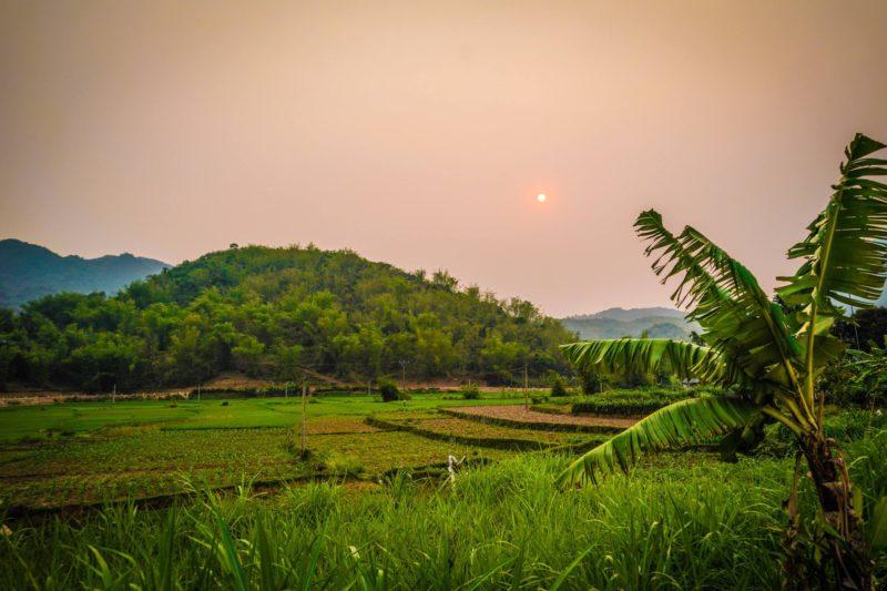 Vietnam Paddy fields with sun in sky